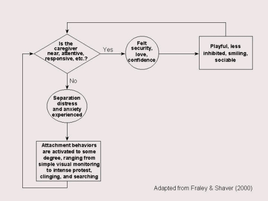 Attachment behavior system
